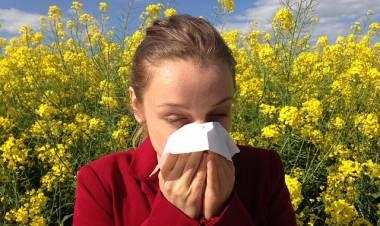 Bahar Alerjisine Ne İyi Gelir? Bahar Nezlesi Bitkisel Tedavi!