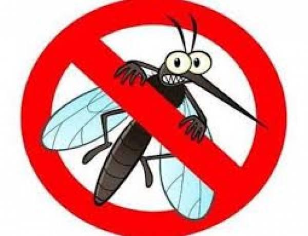 Sivrisinekten Kurtulmak İçin Doğal Ve Bitkisel Yöntemler Nelerdir?