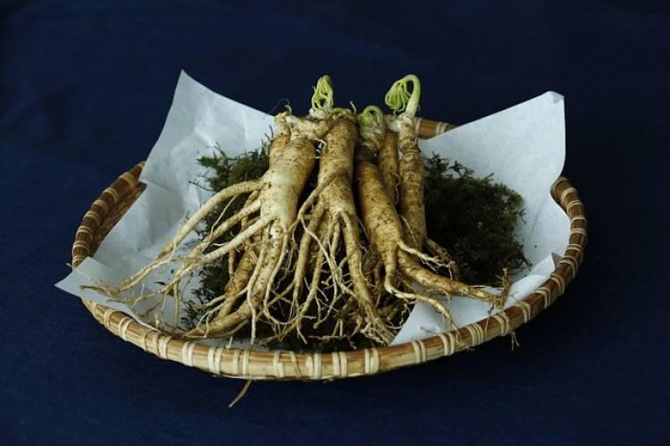 Ginseng Nedir, Faydaları Nelerdir, Nasıl Kullanılır?